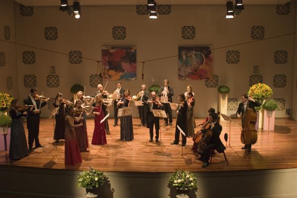 European union chamber orchestra eva stegeman for Chambre orchestra